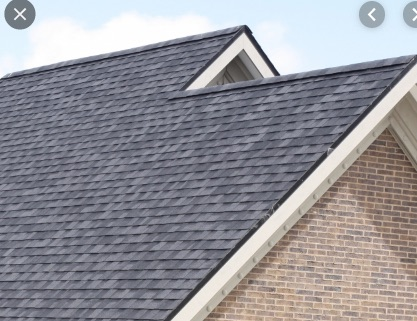 Shingle Roof 1